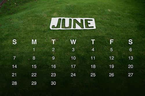 calendario_giugno_2009
